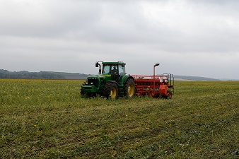 "Direct sowing of winter wheat into cover crops in Ltd. ""Agroprogres - Terebovlya"""